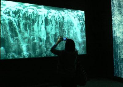 MOVIMENTA, Biennale